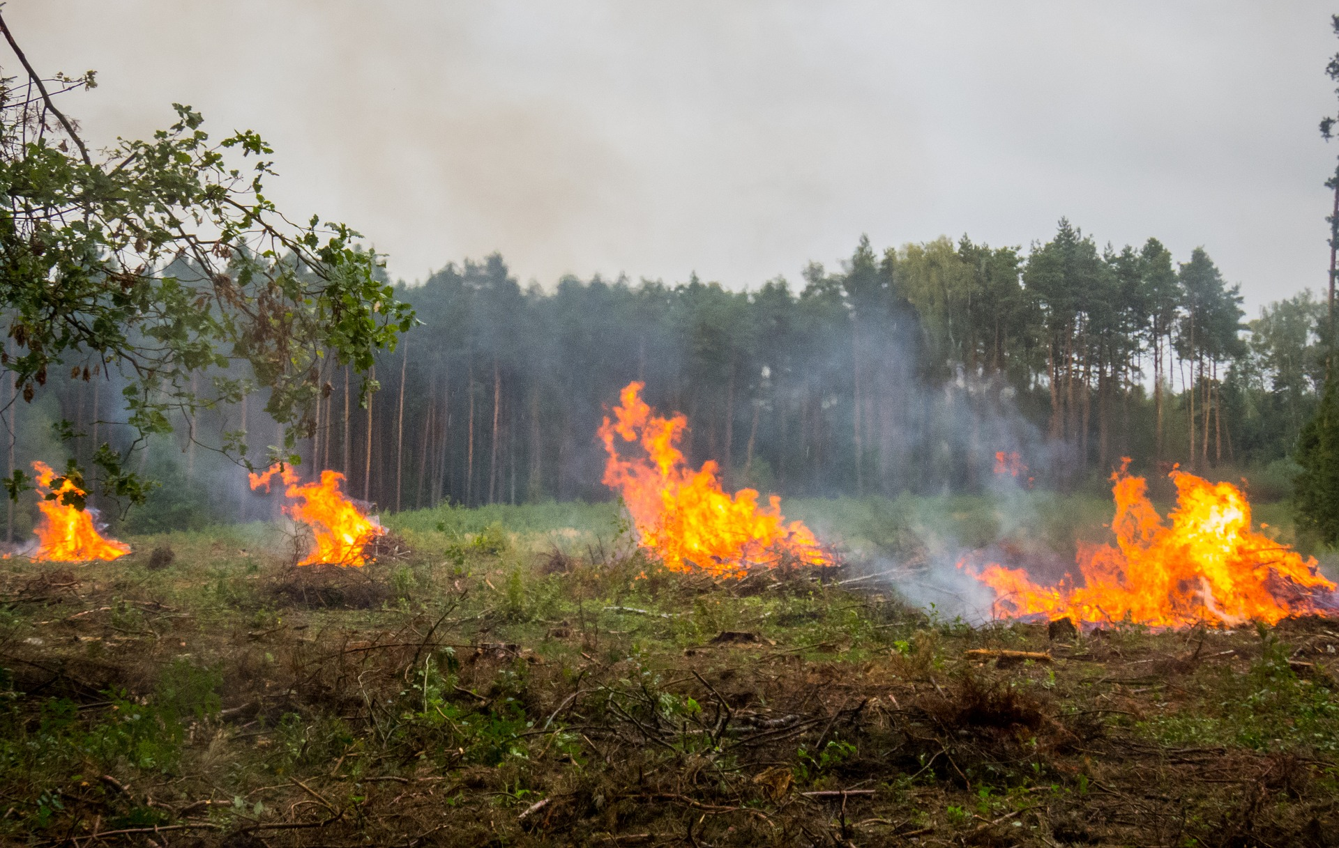 Symbolfoto Brand Feuer