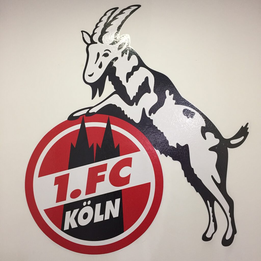 Symbolfoto FC Köln Geißbock