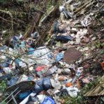 Illegale Müllentsorgung im Wald im Bereich eines Parkplatzes an der B421 (Zeller Berg)